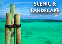 ScenicAndLandscape