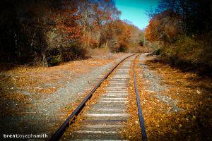 TrackInTheFallBJS.jpg